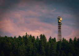 cell tower in wooded area